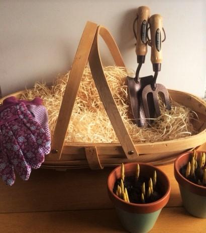 Gardening Trug Gift Set